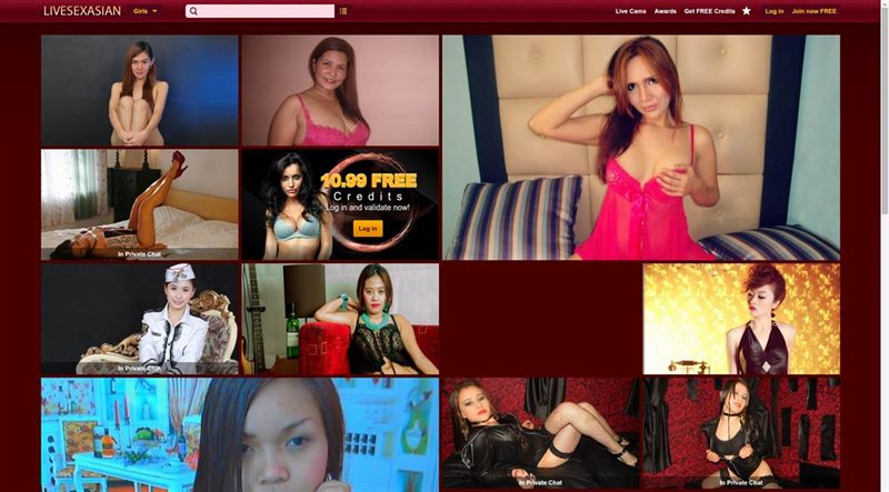 The LiveSexAsian.com site